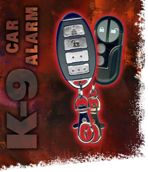 Vehicle Security & Keyless Entry System